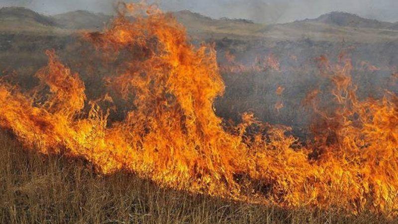 Azerbaiyanos prendieron fuego campos armenios